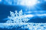 Snowflakes (3).jpg