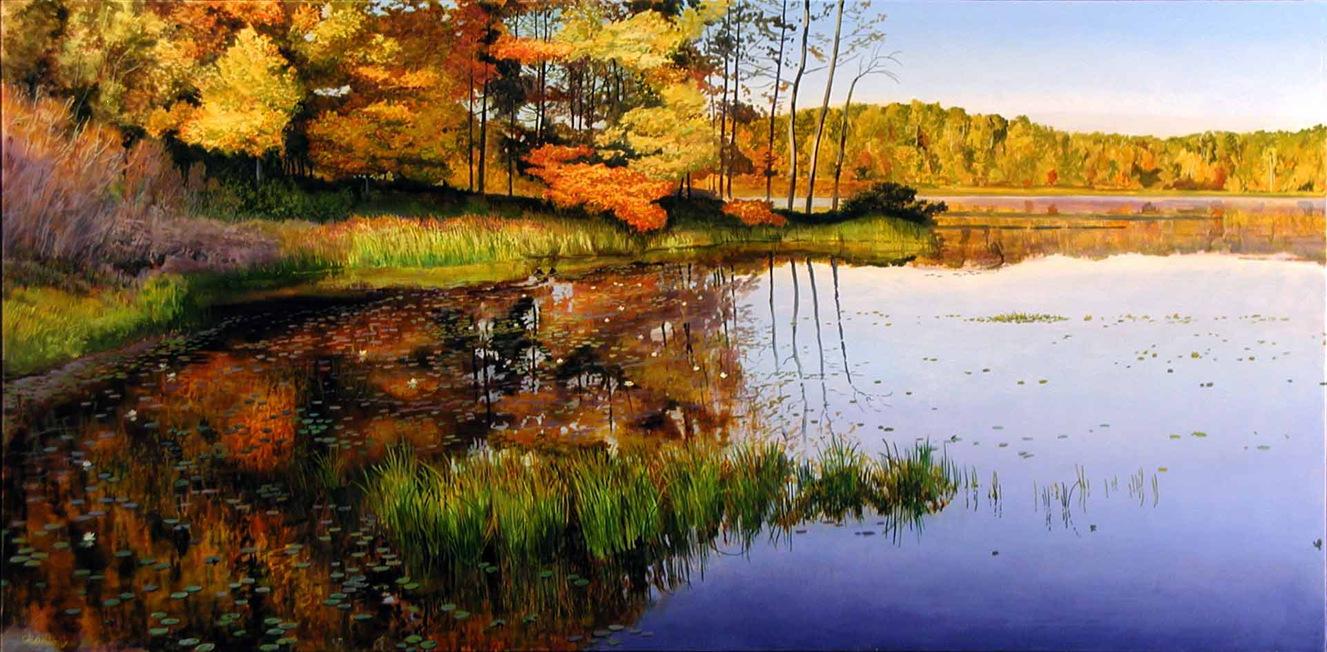 Wildwing Озера в районе Кенсингтон Metropark