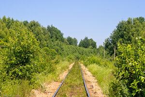 Подъездной путь Вяземского КУ близ д. Селиваново