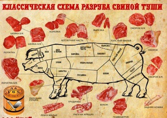 Сканворд тушеное мясо
