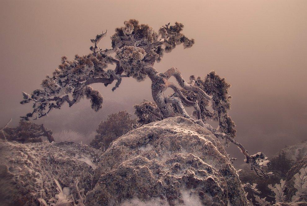 Внизу, на тропе в Лучистое, снега было уже меньше: