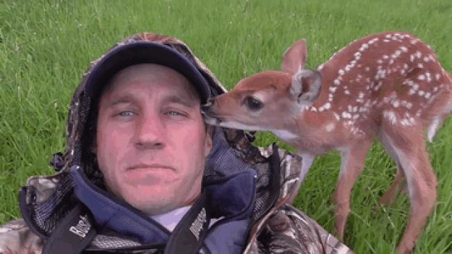 Два олененка родились водворе дома литовского туриста Дариуса Саснаускаса, который живет недалеко о