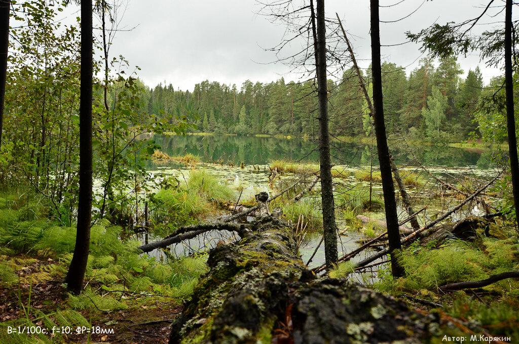 Фотография 4. Пример пейзажа, снятого на Nikon D5100 и Sigma 18-250 macro