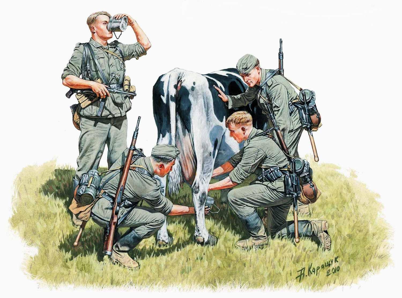 Солдаты немецкого вермахта доят трофейную корову (Андрей Каращук)