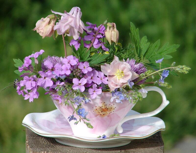 Прекрасного летнего дня и хорошего настроения, доброе субботнее