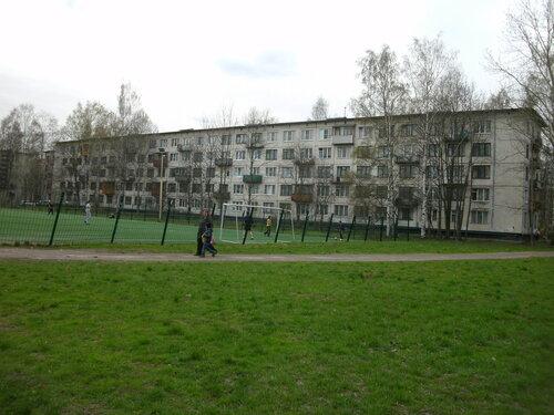 Лужская ул. 10к2