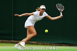 http://img-fotki.yandex.ru/get/9062/14186792.20/0_d8aeb_ac49dc8c_orig.jpg