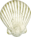 digilicious_exhale_shell01.png