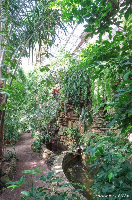 Продолжаем осмотр тропической зоны. Она состоит из нескольких отдельных оранжерей.