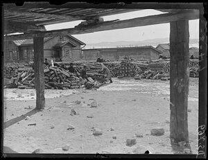 1919. Март. Хилок. Женщины пилят дрова