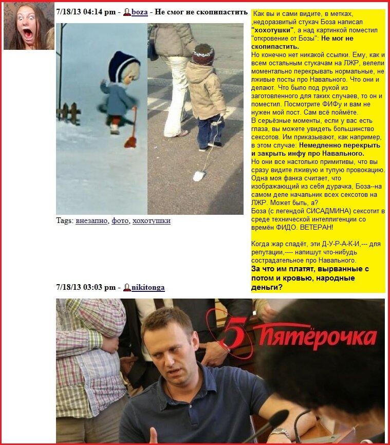 Боза, Навальный, плакатка, сексот