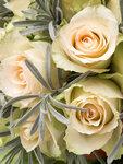 Roses mix (6).jpg