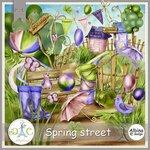 AD_Spring_street.jpg
