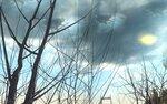 winter (8).jpg