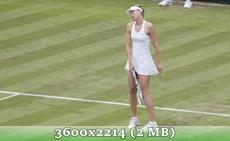 http://img-fotki.yandex.ru/get/9063/14186792.26/0_d8fc2_44ea30f7_orig.jpg