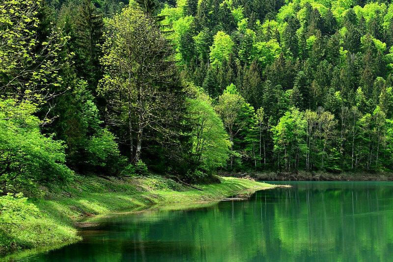 Bergsee  1.jpg
