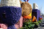 Парад цветов Голландия апрель 2013