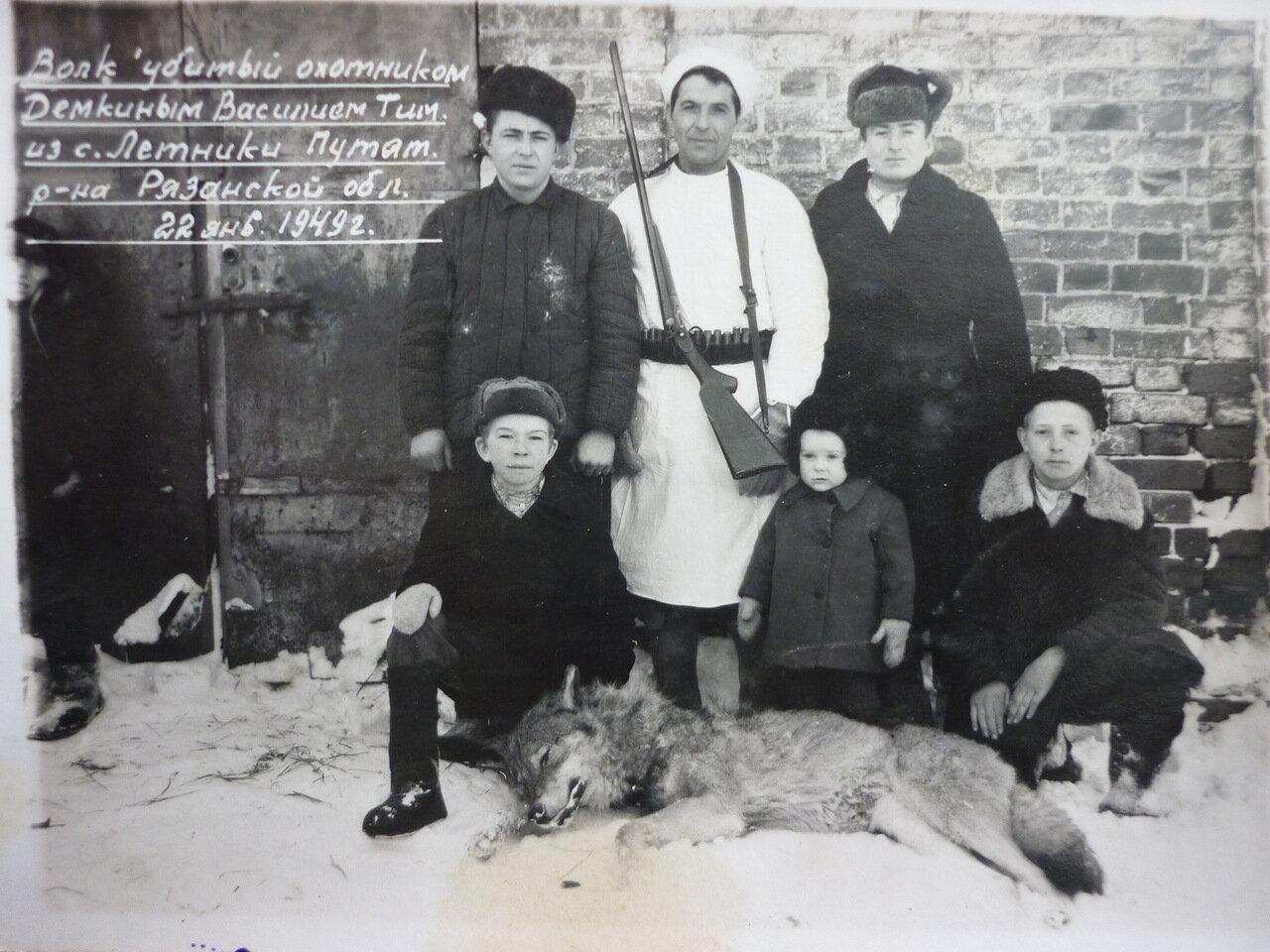 1949, 22 января.  Волк, убитый охотником В.Т.Демкиным. Село Летники Рязанской области