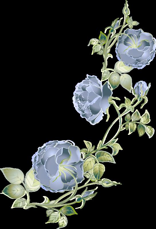 цветы (22).png