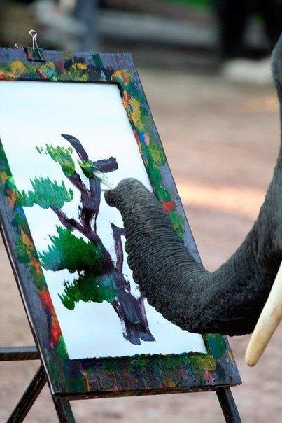 слон и краски