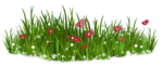 Bush and Grass  (123).png