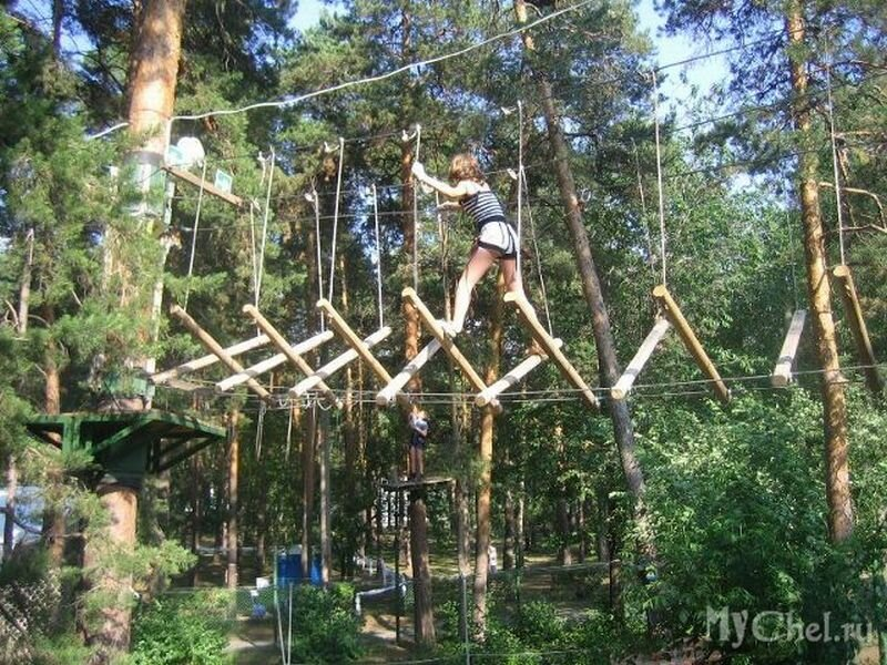 На высоте верхушек деревьев спортсмены преодолевают препятствия (25.06.2013)