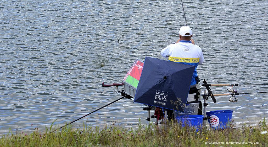 Чемпионат Беларуси по ловле рыбы на фидер. Гомель