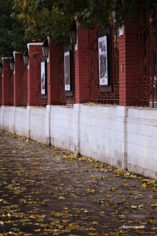 Ноябрь в Москве