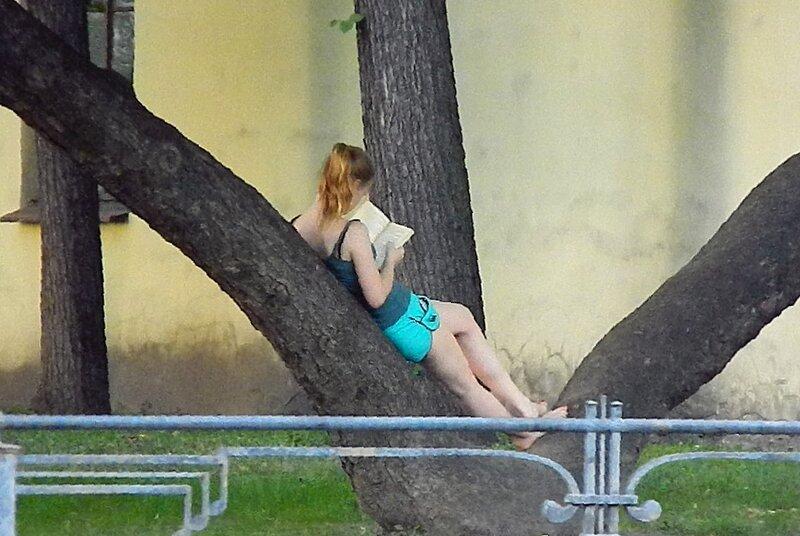 девушка читает на дереве