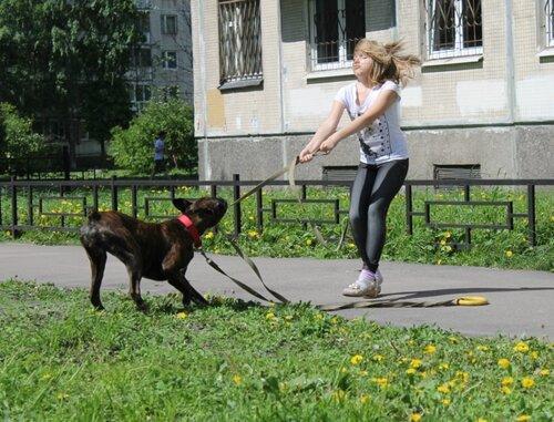 http://img-fotki.yandex.ru/get/9064/37699747.3f/0_a3d6b_37758000_L.jpg