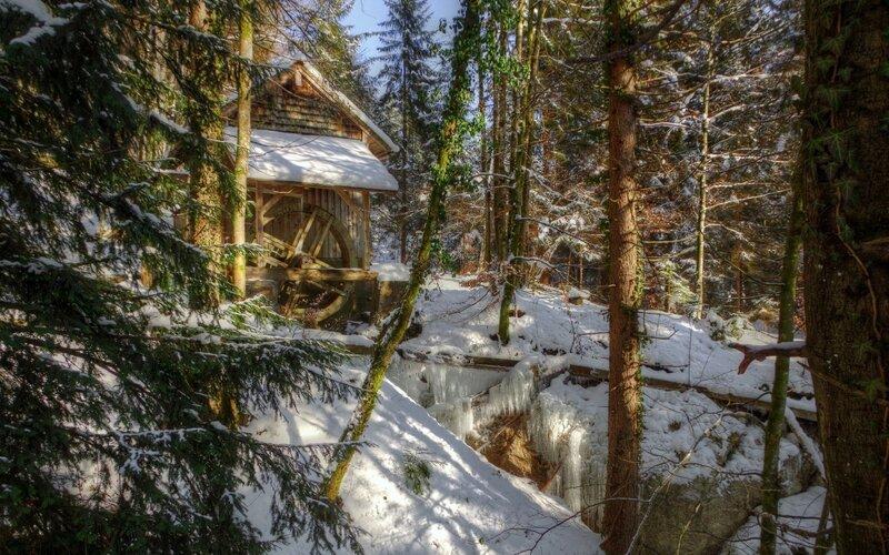 Winter Snow Cald Trees Desktop Background Pictures