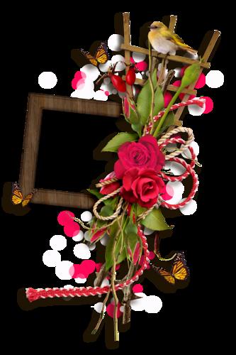 Розы фото огромные яркие бутоны