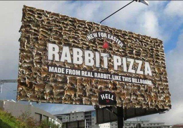 пицца кролик