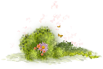 Bush and Grass  (127).PNG