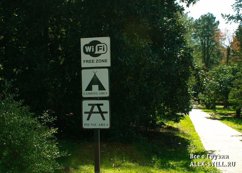 Wi-Fi в ботаническом саду Батуми бесплатен