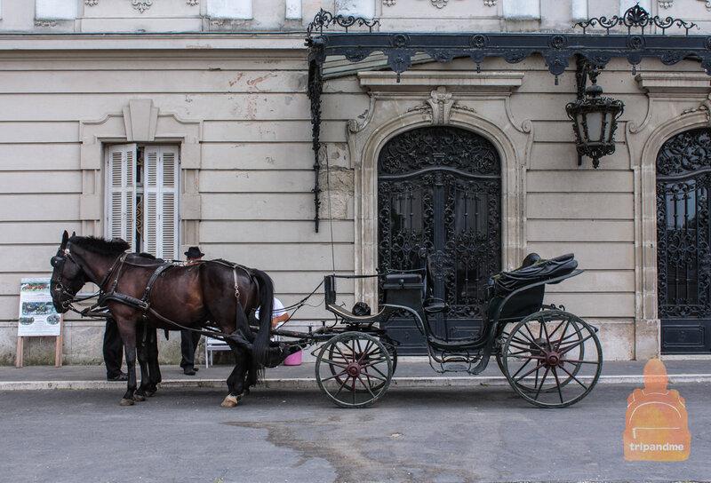 Прогулка на карете по территории дворца