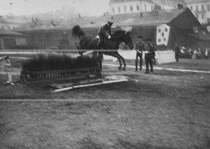 Конные состязания в бригаде на плацу преодоление барьера.