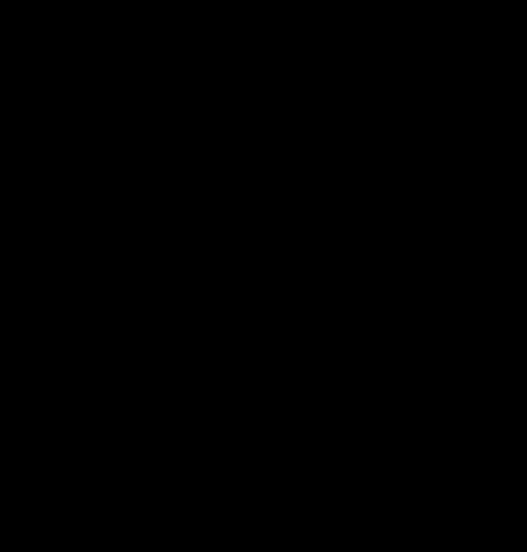 Черно-белые силуэты белочки