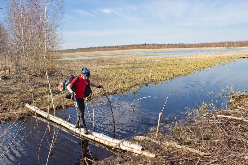 мост через канаву в тесовских болотах