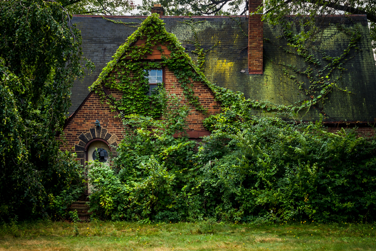 Johnny Joo Photographs Forgotten Structures Overtaken by Nature