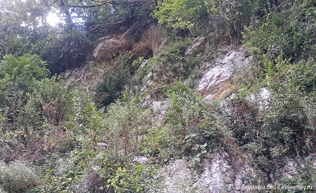 пещера Ипатия Гагрского