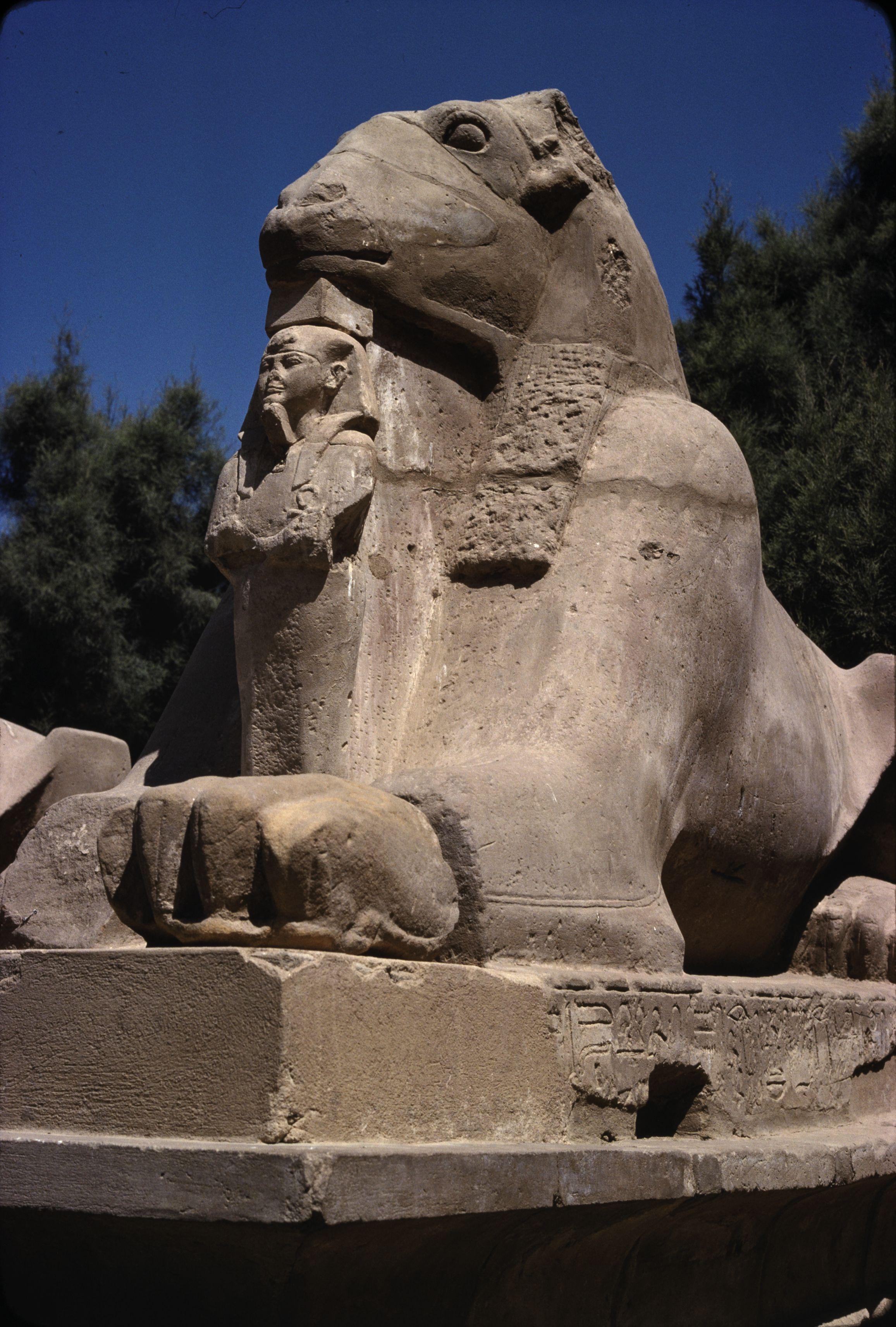 Аллея сфинксов перед Первым пилоном храма Амона