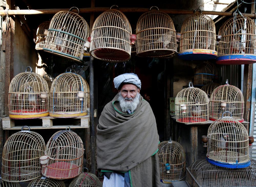 Интересные фото из Афганистана