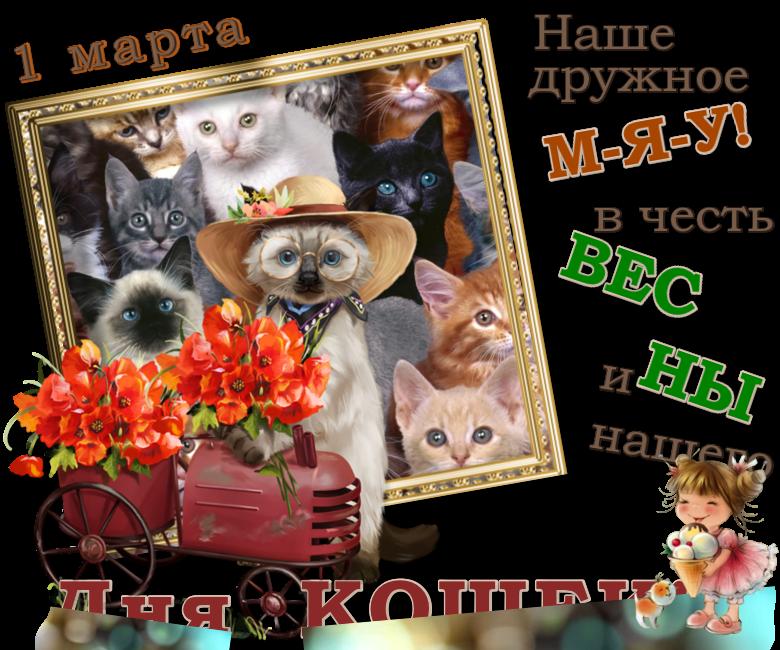 я-праздник-кошек-4 ИN.png