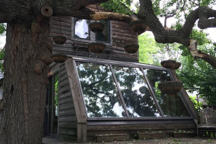 дом мечты Лаури Сведберг соседи фото дом мечты художница