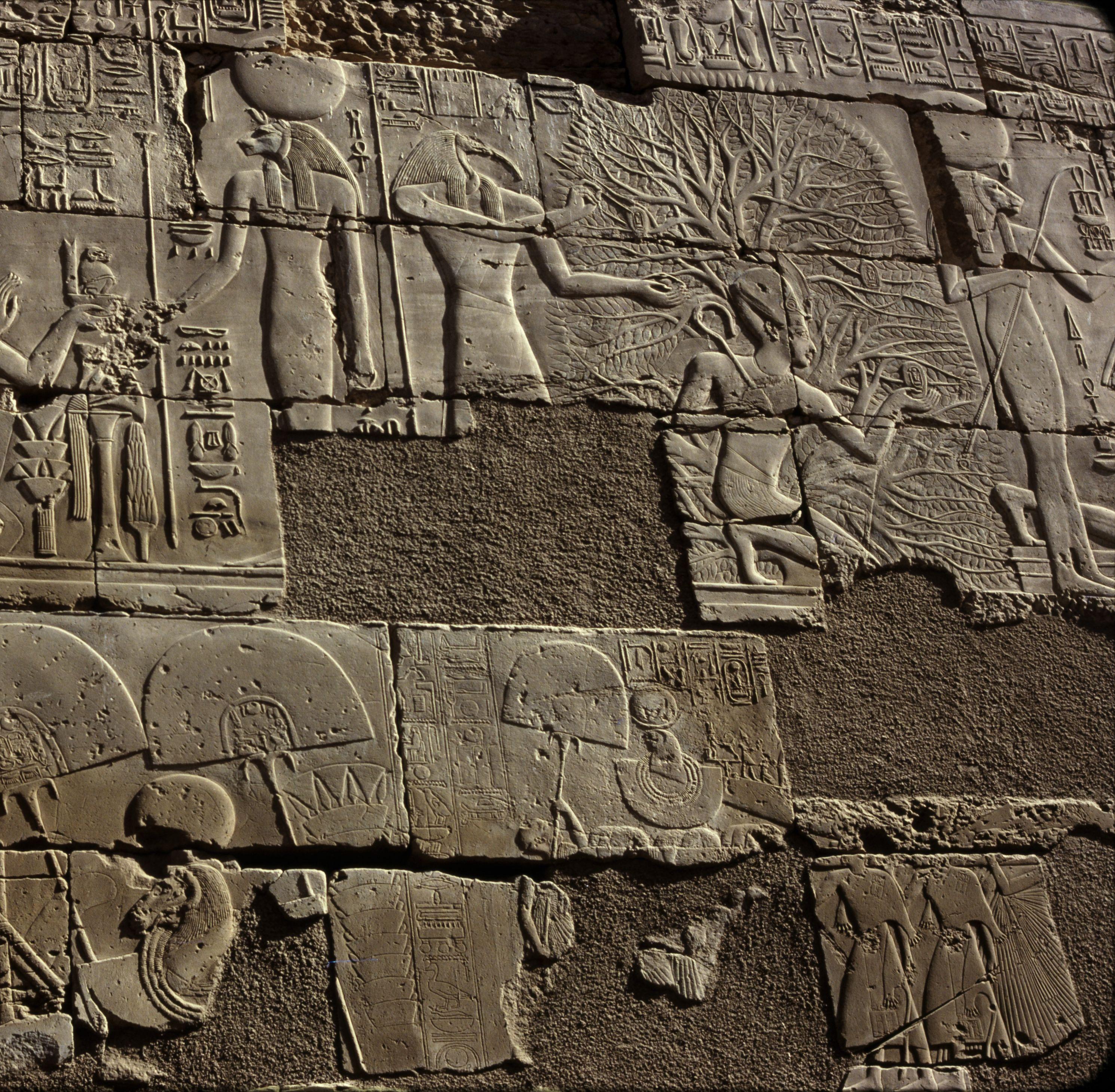 Храм Амона-Ра. Рельефы в Большом колонном зале. Сети приносит жертвоприношение богам, Тот пишет имя Сети I на листьях священной сикаморы