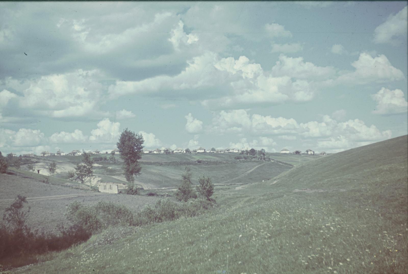 Вид с лугового склона в деревню