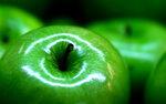 зелень макро