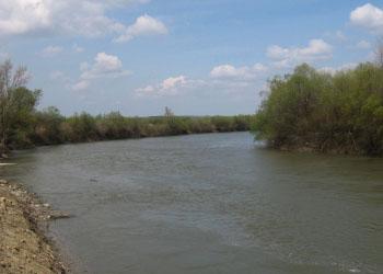 Объявлен жёлтый код в связи с выходом реки Прут из берегов