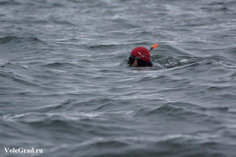 Марафонский заплыв через Амурский залив